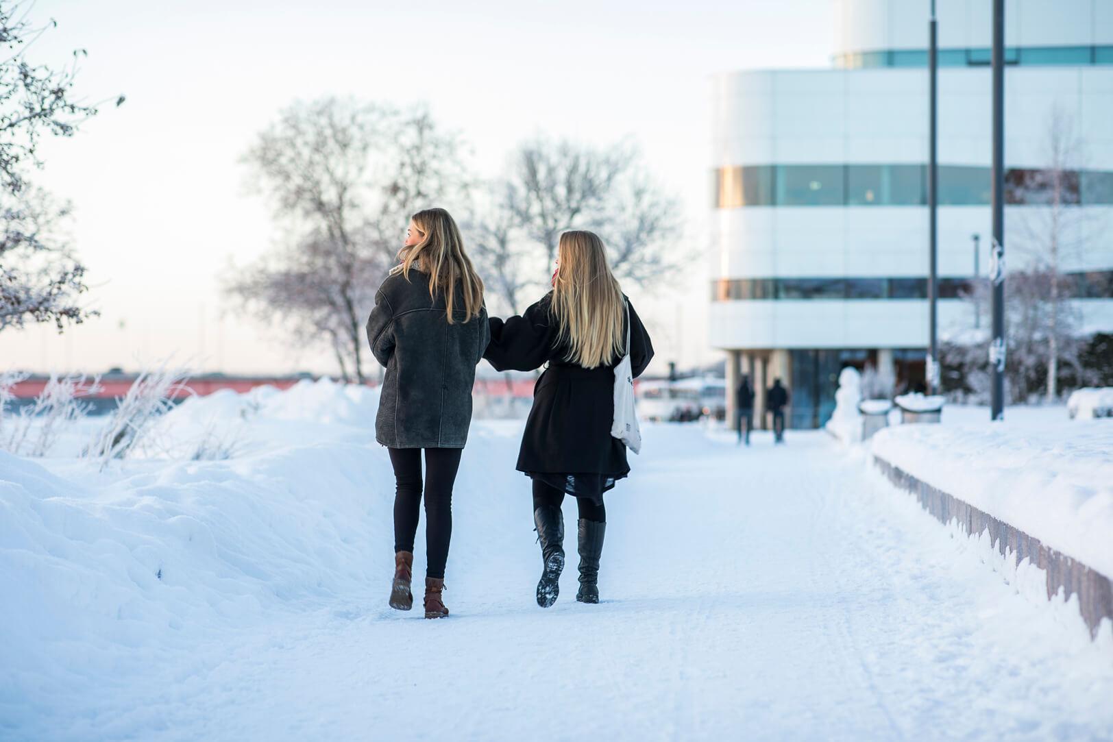 Winter in Umeå